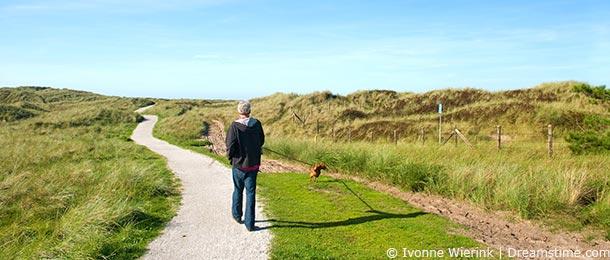 Urlaub mit hund auf ameland ferienwohnungen ferienh user for Urlaub auf juist mit hund
